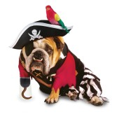 pirate costume for dogs
