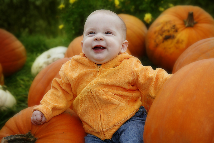It's The Great Pumpkin Patch!